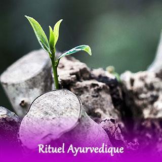 rituel-Ayurvedique